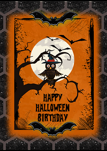 Halloween Owl Birthday